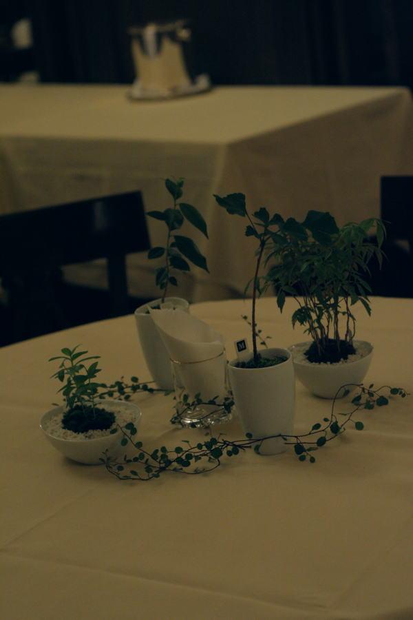 樹木という砂金 シェ松尾青山サロン様への装花_a0042928_19375136.jpg