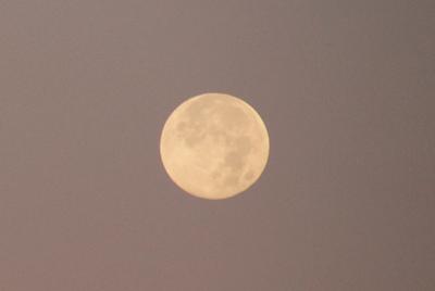 ■「満月の龍の目」と「野呂山の十六夜の夜明け」■_f0080530_19385378.jpg