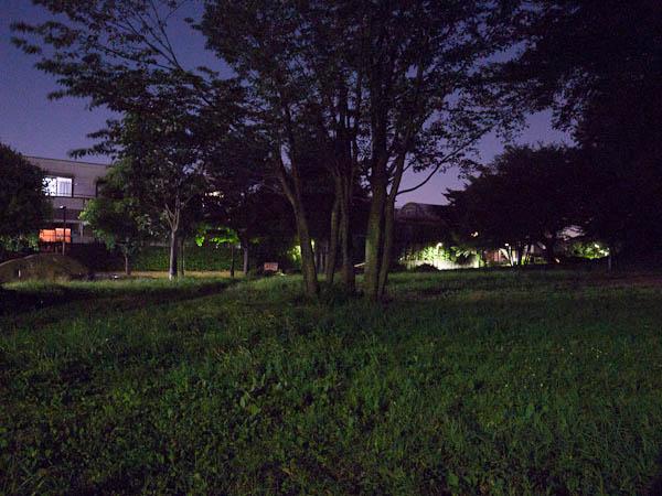 夜景ってみたのも、一枚。_b0229648_1210480.jpg
