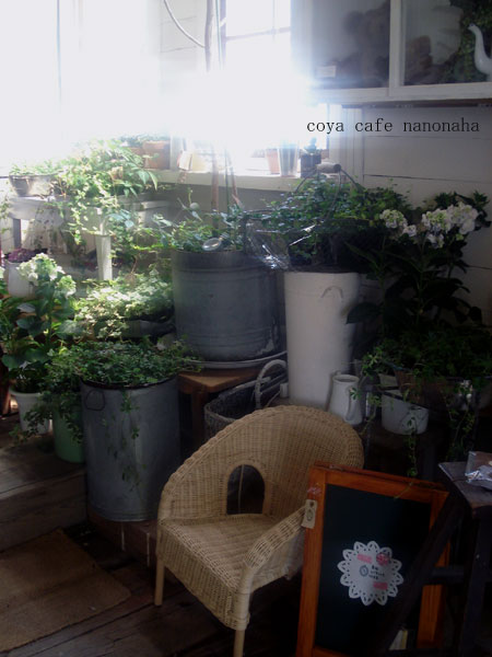 green market in coya cafe なのはな_f0189549_10475776.jpg