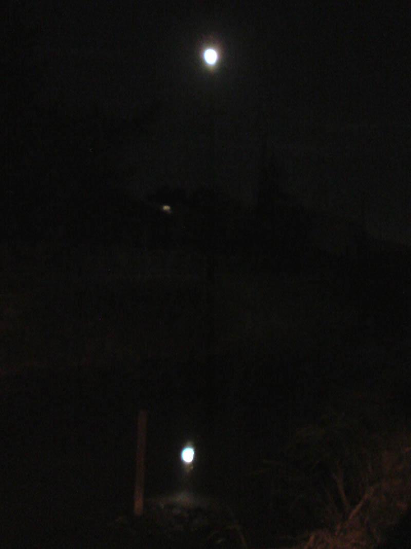 hula moon._e0033459_128279.jpg