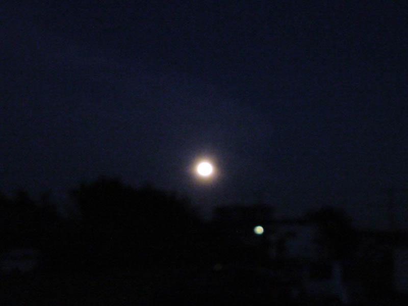hula moon._e0033459_1342831.jpg