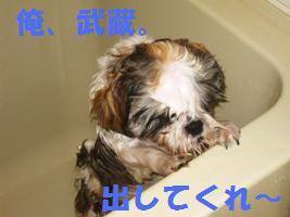 d0140668_14125771.jpg
