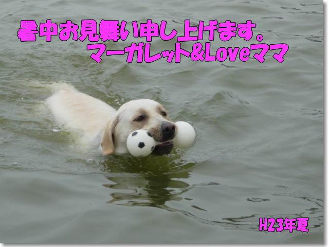 b0136683_15184934.jpg
