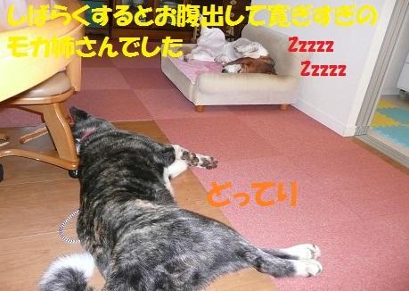 f0121712_11594342.jpg
