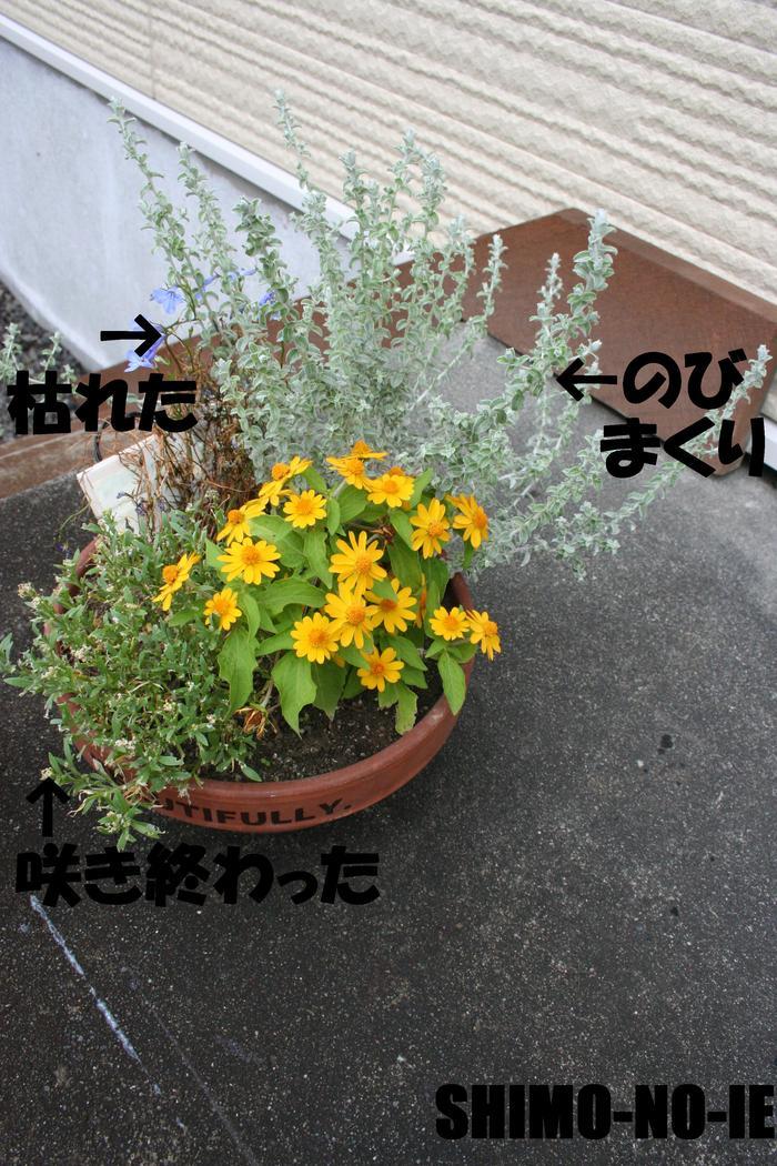 d0248720_186535.jpg