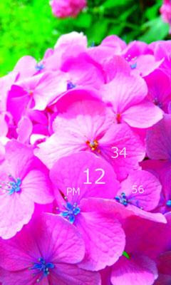 c0060143_3255778.jpg