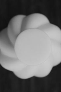 若杉聖子さんの造形_d0087761_1743186.jpg