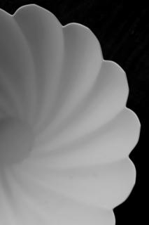 若杉聖子さんの造形_d0087761_176517.jpg