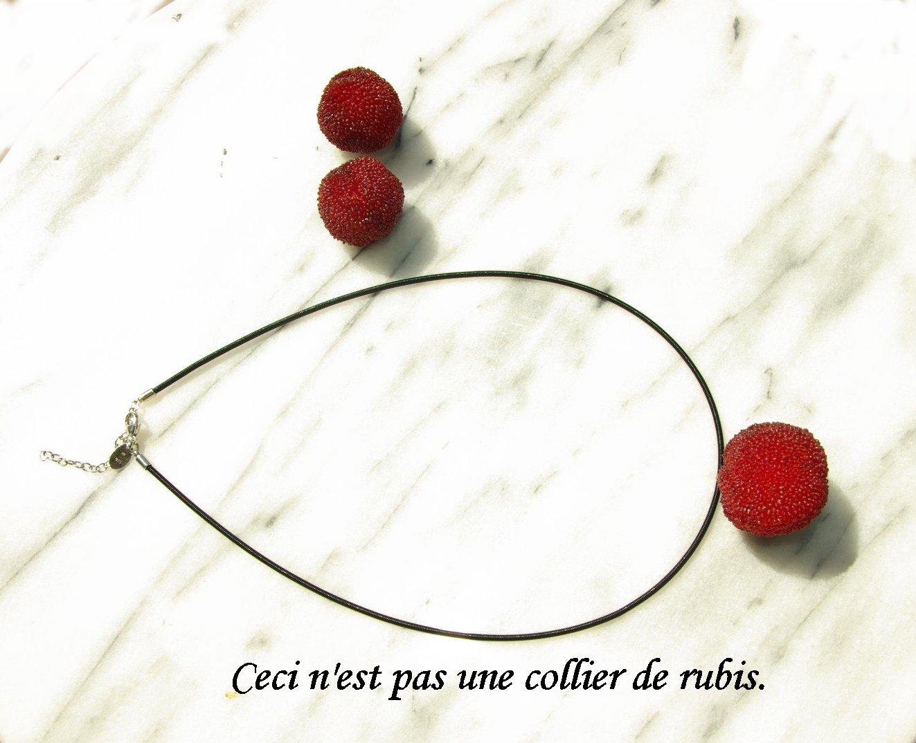 これはルビーではない/Ceci n\'est pas une collier de rubis._e0140365_132348.jpg