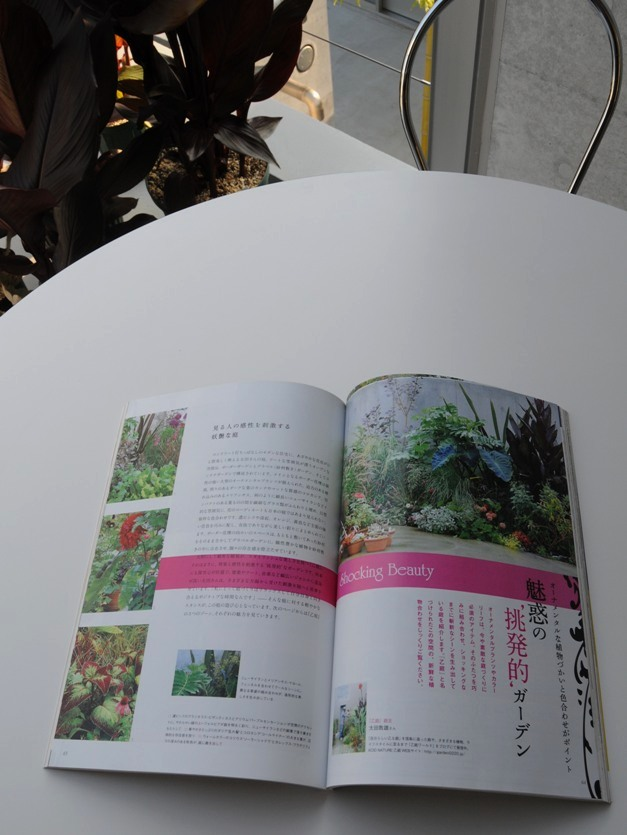 雑誌掲載のお知らせ ^^_f0191870_23958100.jpg