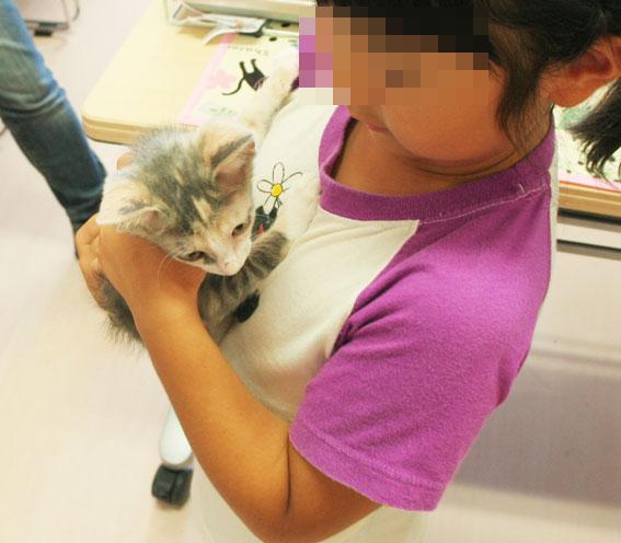 猫譲渡会へ!_d0071596_21202262.jpg