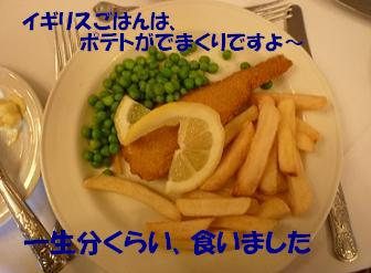 a0154801_20232153.jpg