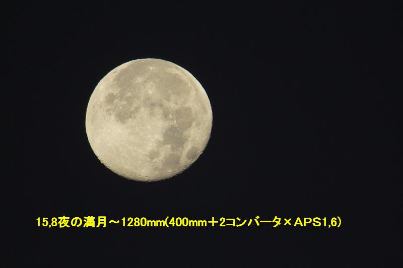 a0188405_1394346.jpg