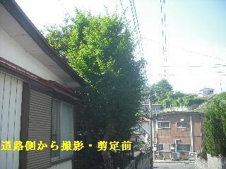 f0031037_19572527.jpg