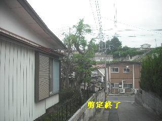 f0031037_19573278.jpg