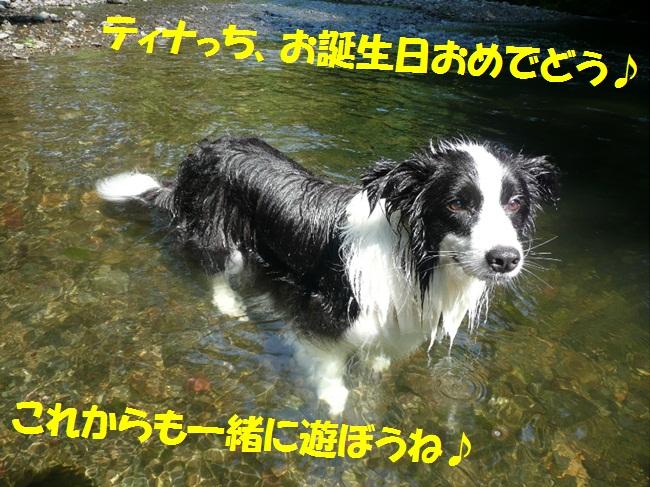 c0147241_0393870.jpg