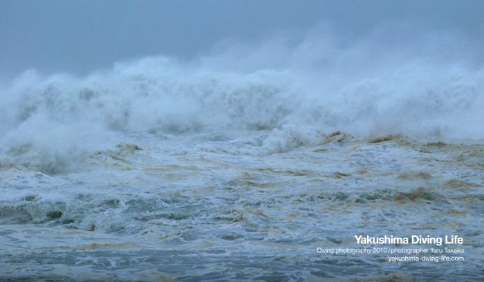 台風6号~大波~_b0186442_2146496.jpg