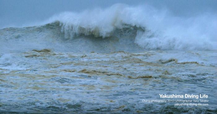 台風6号~大波~_b0186442_2146876.jpg