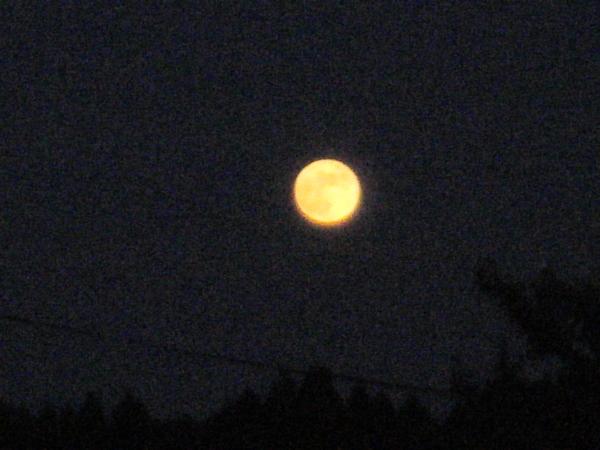 満月の日に想う_a0174458_2355281.jpg