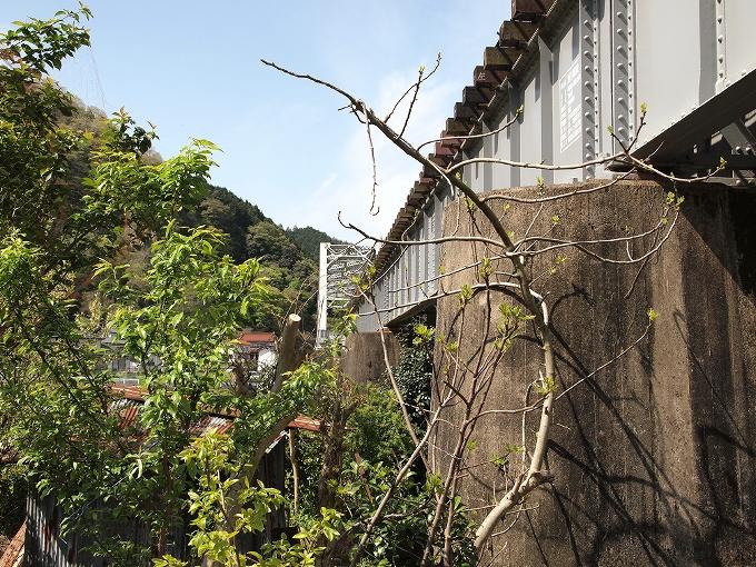 姫新線旭川橋梁_f0116479_14354451.jpg