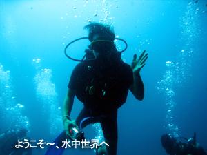 船上は地獄、水中はパラダイス♪_f0144385_817899.jpg