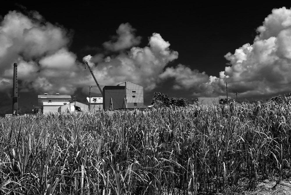 製糖工場_e0004009_074270.jpg