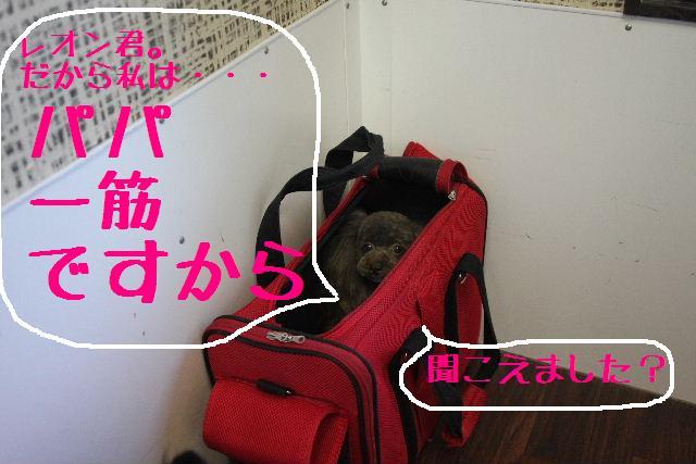 b0130018_1641302.jpg