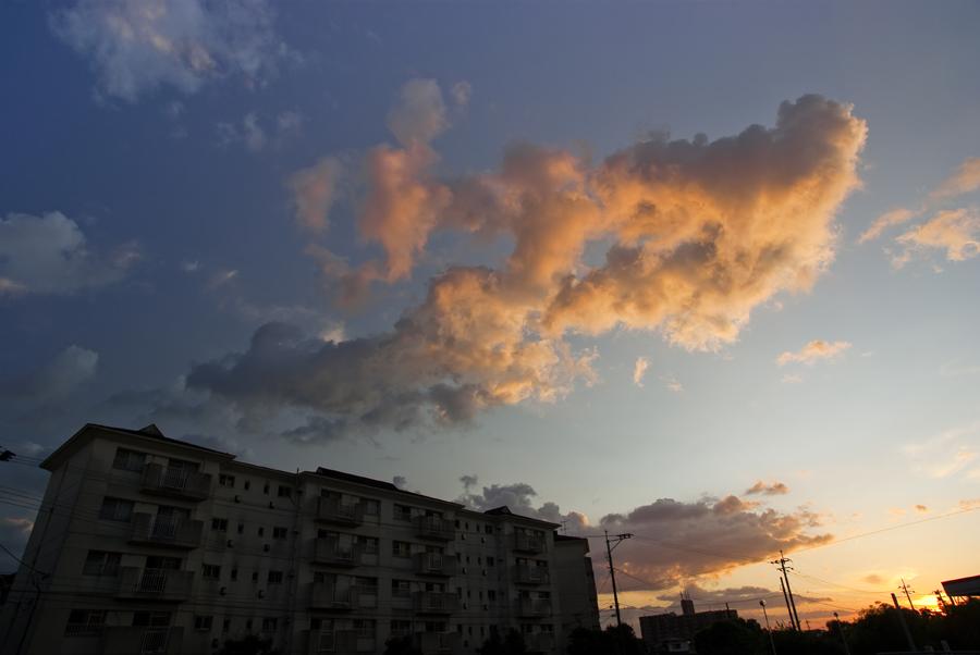 SUMMER DAY_c0195620_22103130.jpg