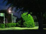 満月の夜、公園に現れた…緑のモンスター!?_e0175370_11252789.jpg