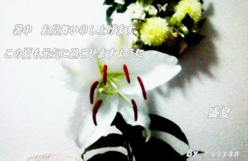 d0178877_0593934.jpg