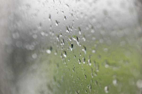 たまには雨もいいよね_f0217594_13385433.jpg