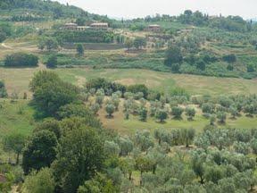 イタリアです!/En Italie_d0070113_791289.jpg