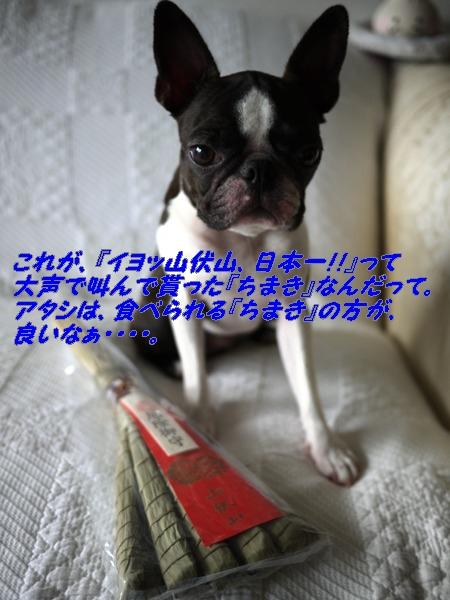 d0155952_9255274.jpg