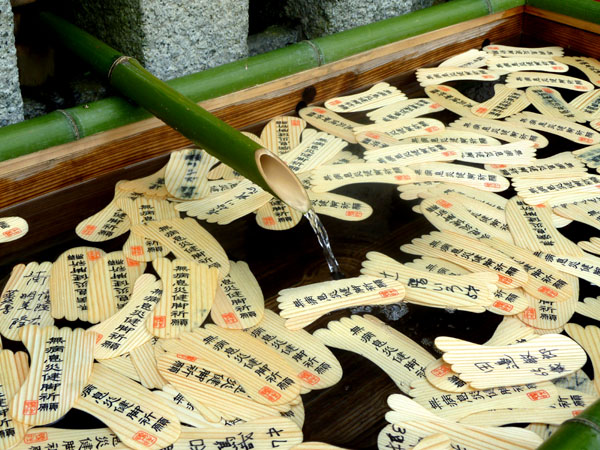 下鴨神社 みたらし祭り_e0048413_19595994.jpg
