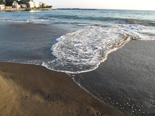 秋谷海岸 散歩(2)_d0150720_11545192.jpg