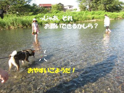 f0143123_2053670.jpg
