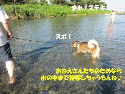 f0143123_207148.jpg