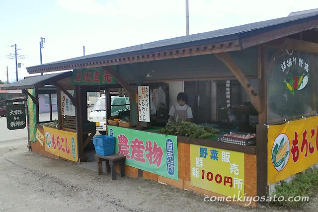 地元野菜直売!_b0179231_12524388.jpg