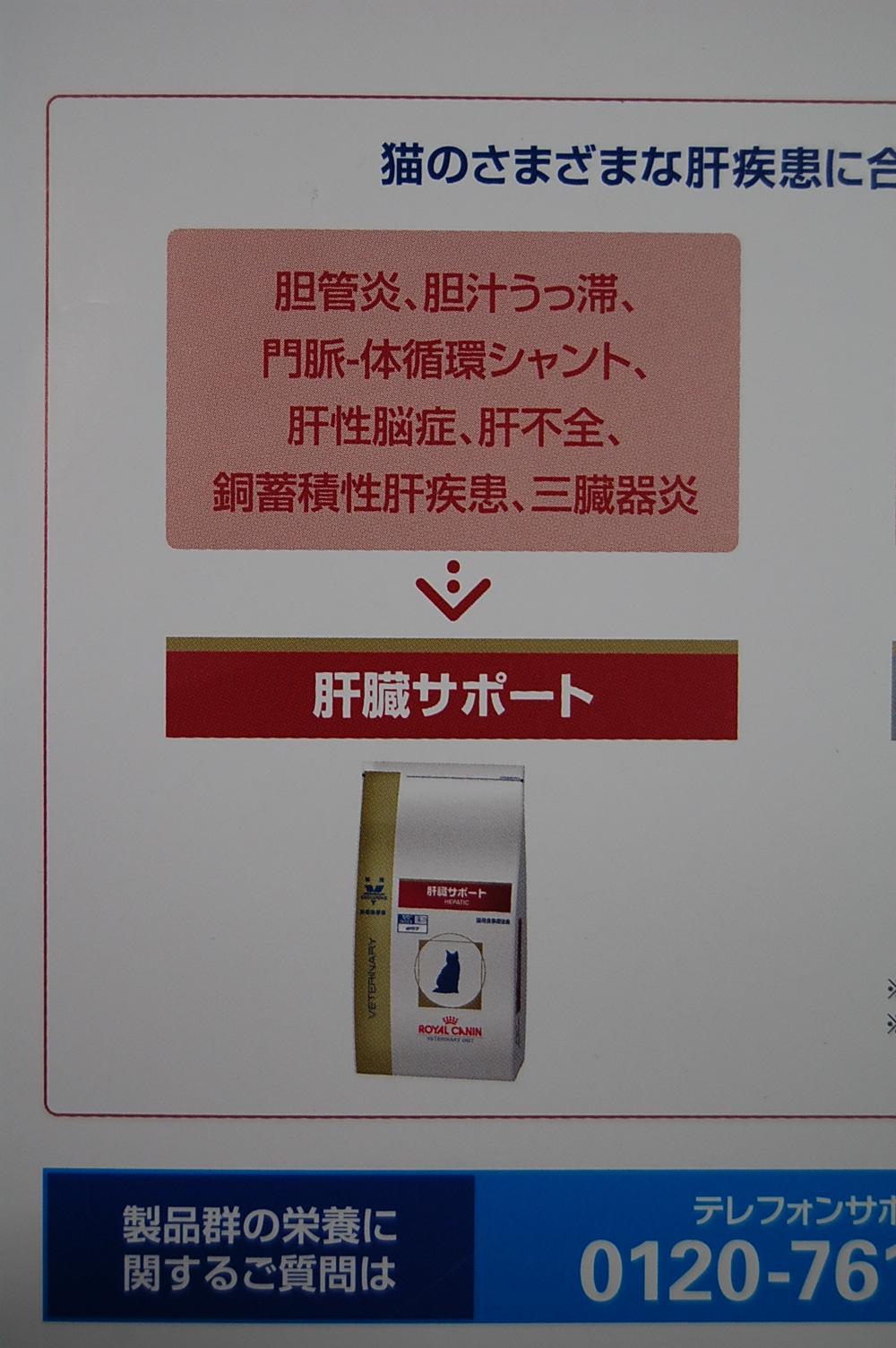 2011/7/20      タマ絶好調_f0211133_8553767.jpg