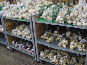 ジャガイモの食べくらべはいかが?_c0141652_15435767.jpg
