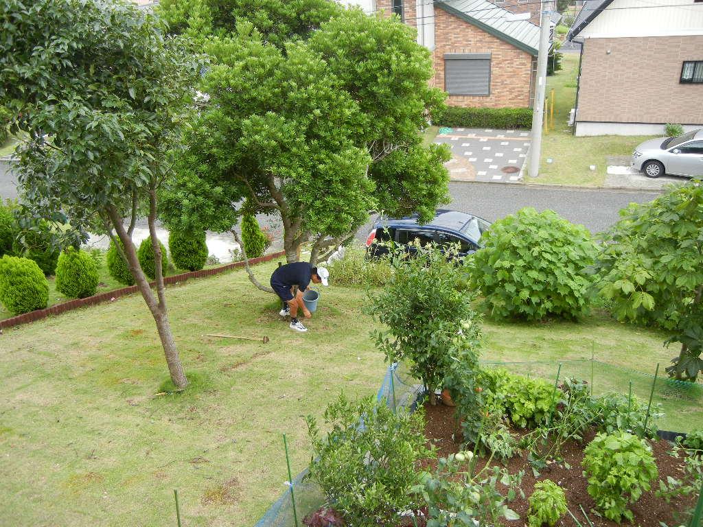 2011年7月21日(木)嵐は去ったけど・・・!_f0060461_16294690.jpg
