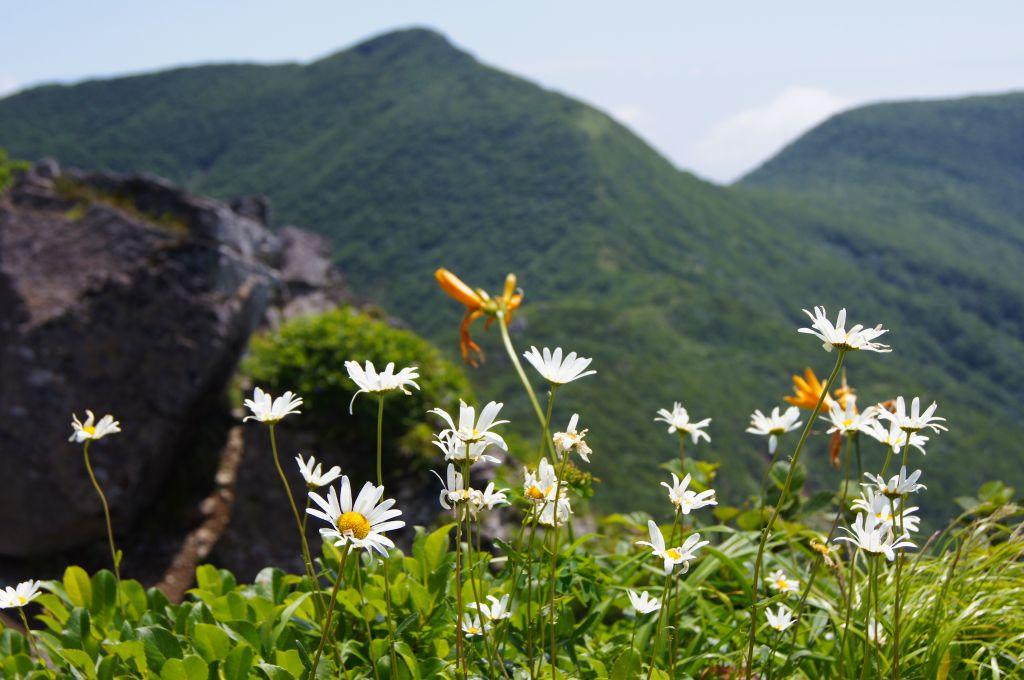 7月21日、徳舜瞥山、ホロホロ山と樽前山-その1-_f0138096_18515843.jpg