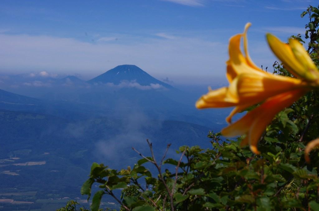 7月21日、徳舜瞥山、ホロホロ山と樽前山-その1-_f0138096_18521212.jpg