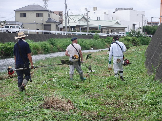 やっぱりヘビが出た!小潤井川の草刈り_f0141310_7252215.jpg