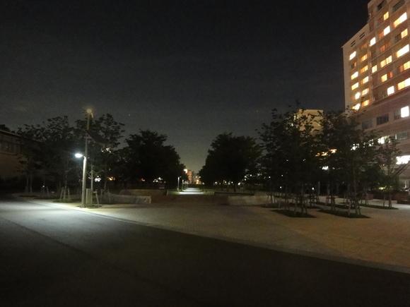 夜の公園を歩いてみました!_e0235911_2153178.jpg