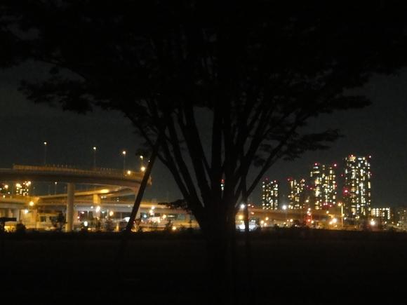 夜の公園を歩いてみました!_e0235911_215899.jpg