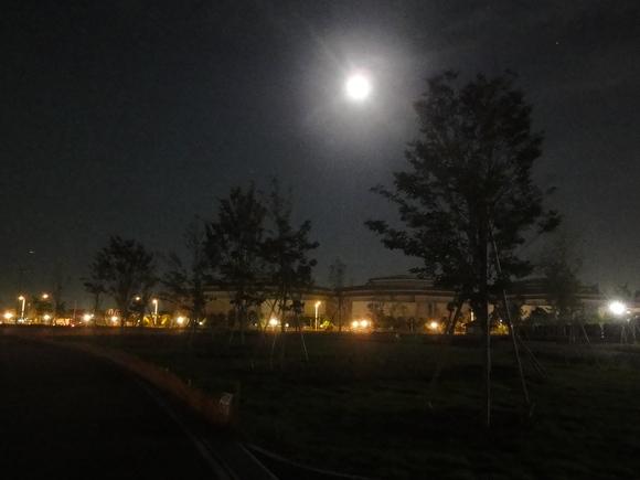 夜の公園を歩いてみました!_e0235911_2159585.jpg