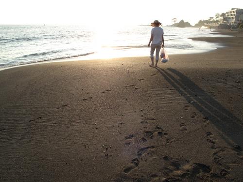 秋谷海岸 散歩(3)_d0150720_7233174.jpg