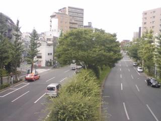 指ヶ谷リベンジ(2) 最上流・西原_d0247424_10222116.jpg